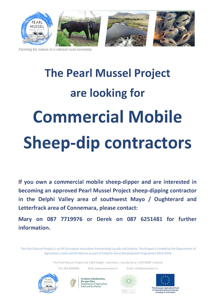 Sheep Dippers poster2